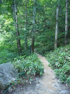 中房温泉からの登山道