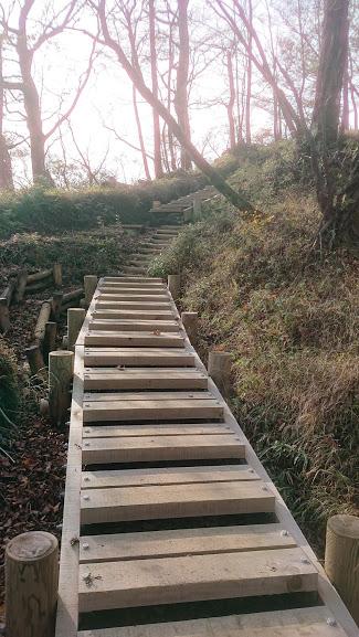 丹沢ー塔ノ岳の階段