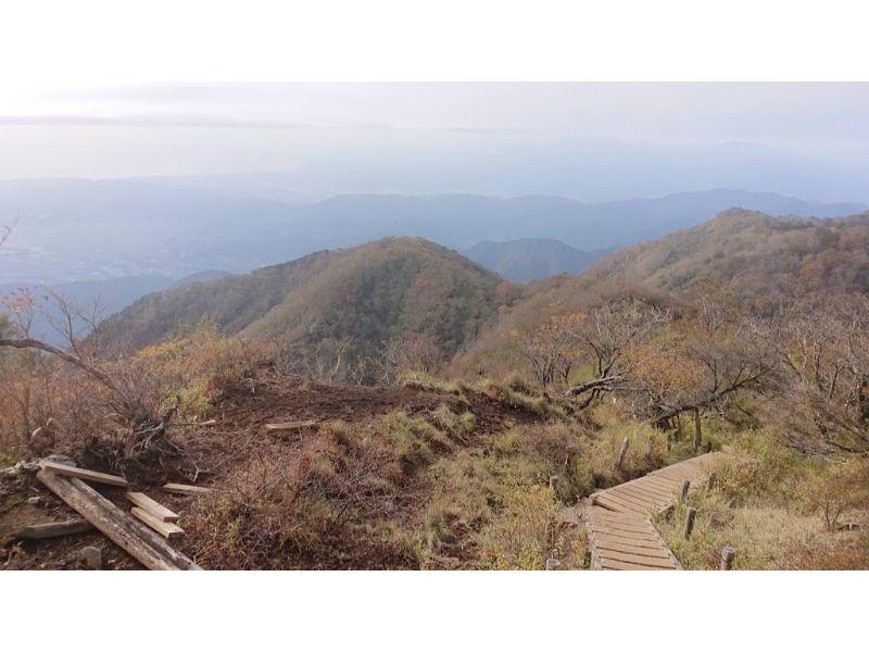 塔ノ岳からの下山道