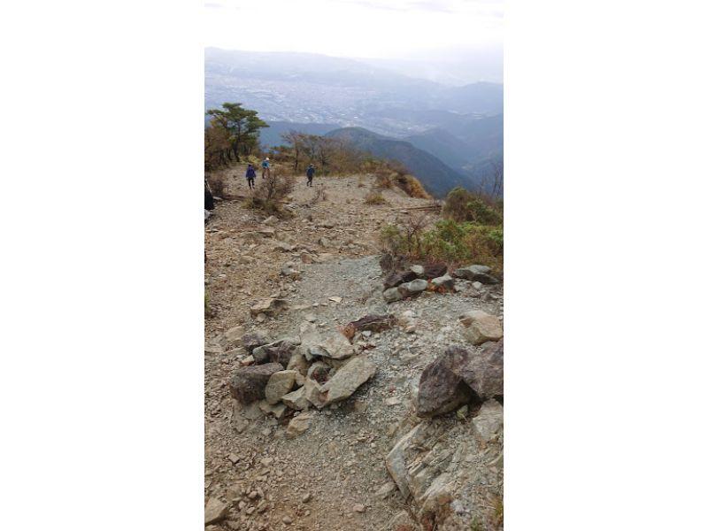 塔ノ岳からの下山道2