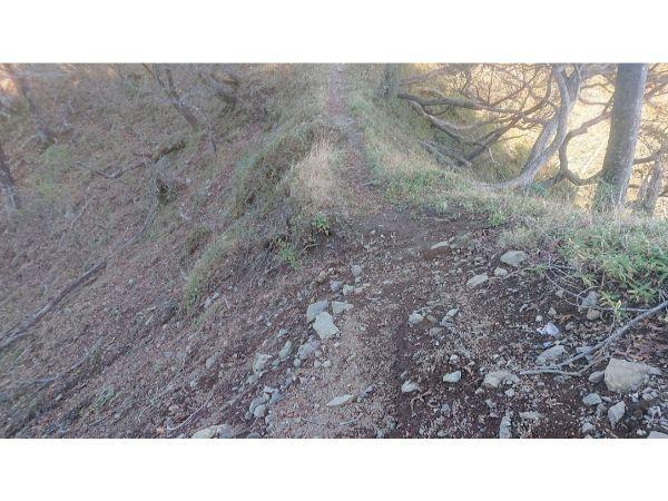 丹沢主稜縦走の登山道6