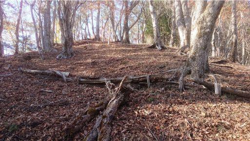 小丸尾根の平地