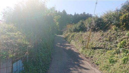 西山林道への道