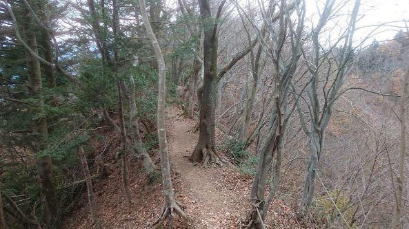 高取山への道