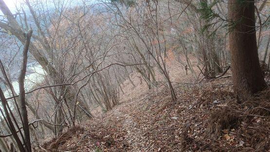 高取山の下山道