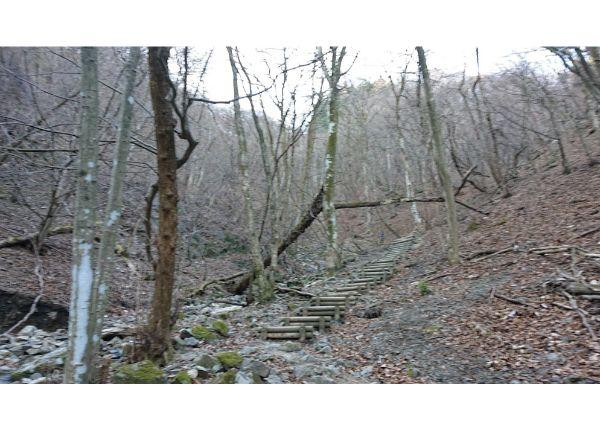 棒ノ折山登山道8