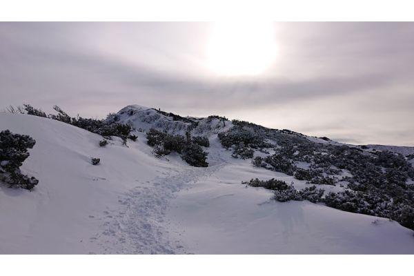 大山の稜線1