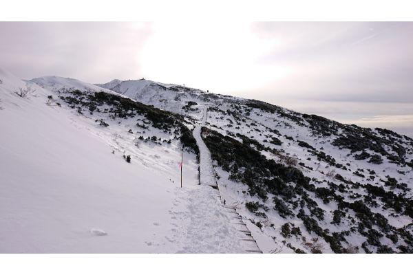 大山の稜線2