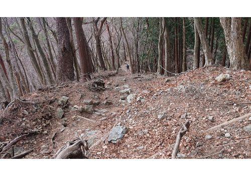 鍋割山からの下山道4