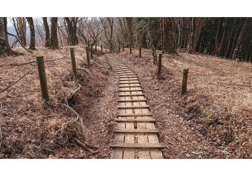 鍋割山からの下山道(木道)