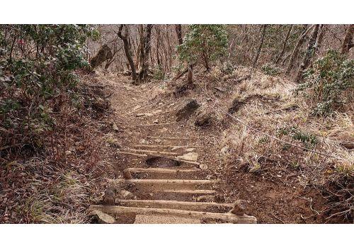 鍋割山からの下山道(階段)