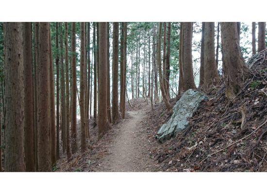 岩茸石山から 惣岳山 へ