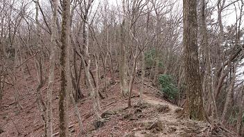 黒山からの登山道2