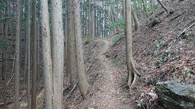 黒山からの登山道