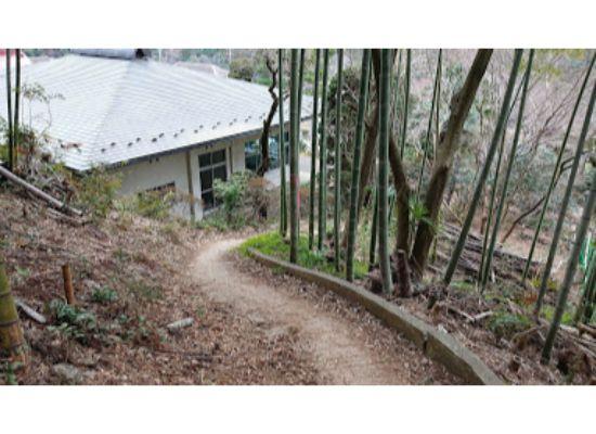 惣岳山 からの登山道4