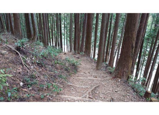 惣岳山 からの登山道3