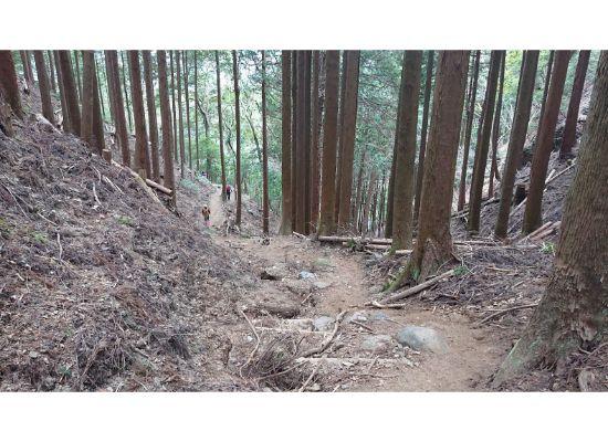 惣岳山 からの登山道