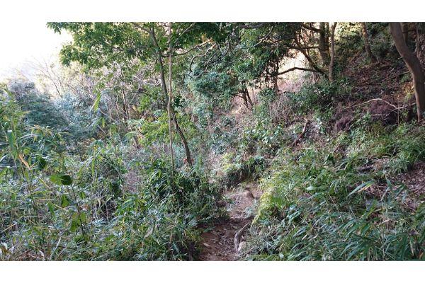 八王子城からの登山道