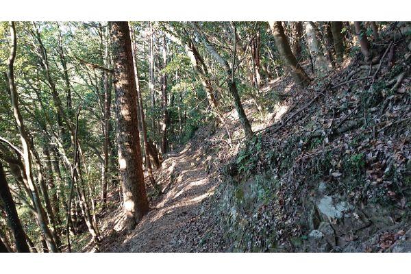 八王子城神社からの登山道2