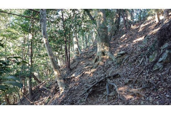 八王子城神社からの登山道3