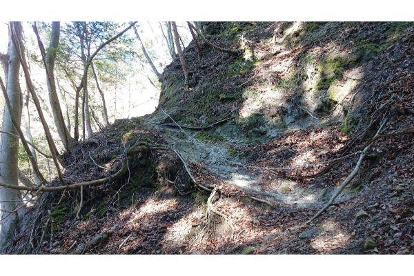 畦ヶ丸への登山道3
