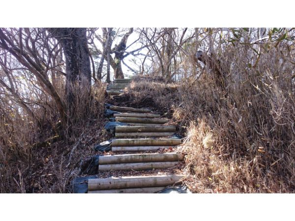 菰釣山からの階段(つらい)