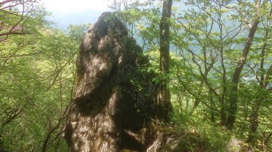 噂の尖った岩