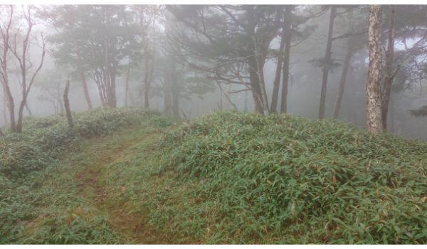 唐松尾山への尾根