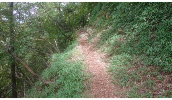 平坦な巻き道を歩く