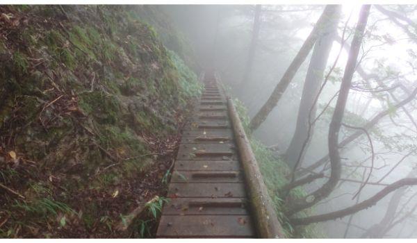 滑る木の橋
