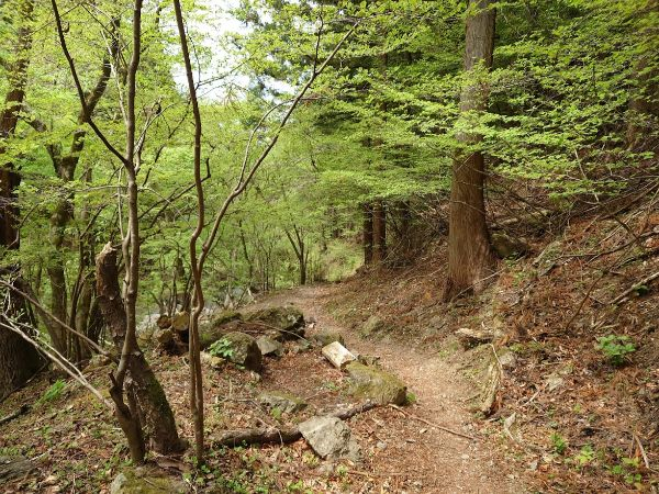 林道のはじまり。とにかく長い。