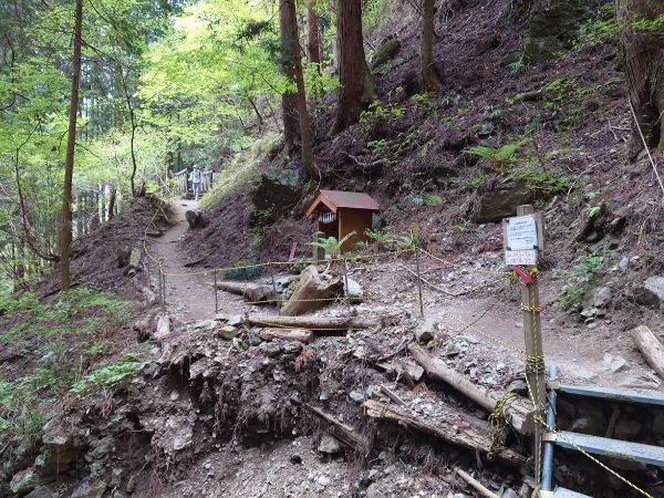 しっかりとした武甲山の登山道