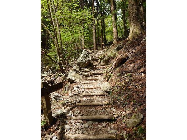 登山道の開始